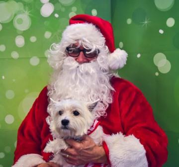 Santa Pictures 10