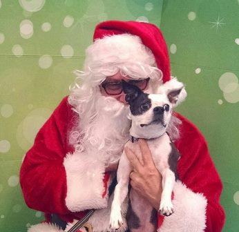 Santa Pictures 2