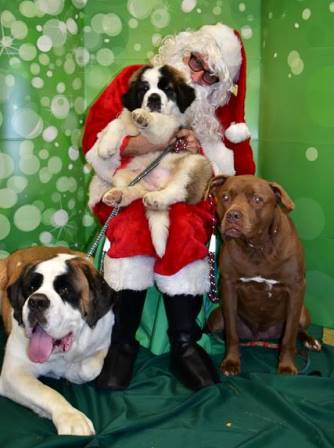 Santa Pictures 4