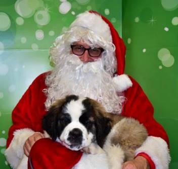 Santa Pictures 8