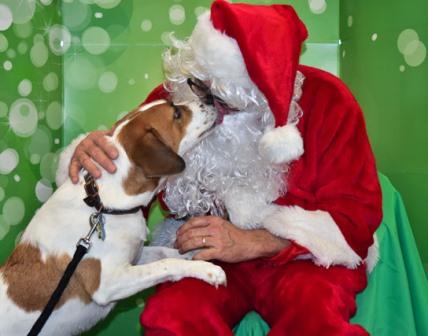Santa Pictures 9