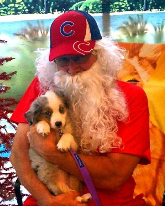 Santa Pups 1 R