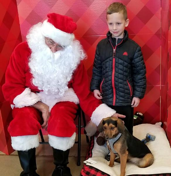 Santa & Dog 3